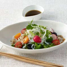 Shirataki Salad